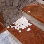 Profanato il tabernacolo della parrocchia di don Filippo Custode a Bagheria